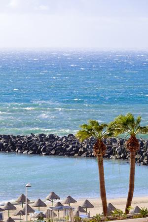pinta: View of Playa la Pinta in city Costa Adeje, Tenerife, Canary Islands, Spain.