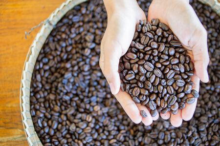Hands holding roasted coffee beans Stock fotó