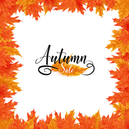 white frame background rounding by maple leafs ,text over leafs presented on sale season as autumn theme, artwork can be remove text easily 向量圖像