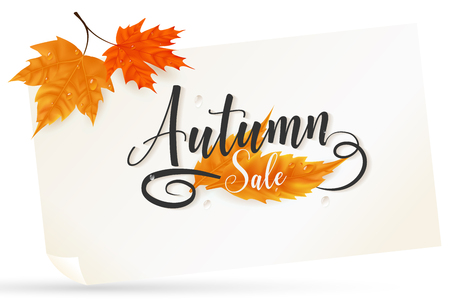 a branch of maple leaves put it on over the paper sheet, middle included text presented autumn sale season as script typography ,artwork is tiny rotated to the left look and feel more attractive.
