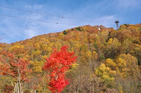 ropeway: Japan Alps and Shinhotaka Ropeway and Fallfoliage