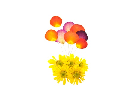 Balloon from press rose flower and yellow mum flower photo