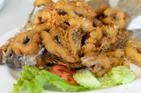 gourami: Fried Giant Gourami Fish With Garlic Sauce