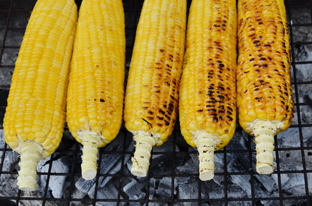 Sweet corns grilled on stove.