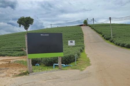 Billboards at the road way garden. 写真素材