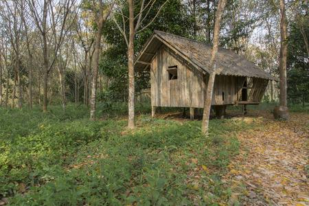 Wood cabin in the forest Reklamní fotografie