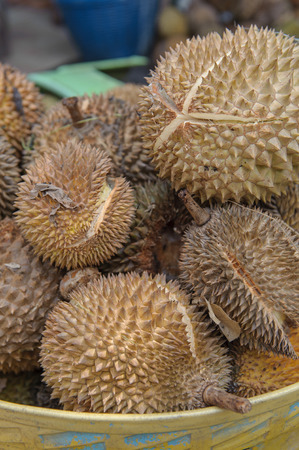 formidable: Pile of durian sale in local market. Regarded by many people in southeast Asia as the king of fruits, the durian is distinctive for its large size, strong odour and formidable thorn-covered husk.