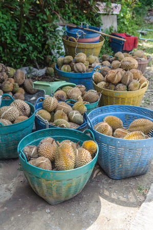 malaysia culture: durian fruit stacked in a basket for sale in Thailand