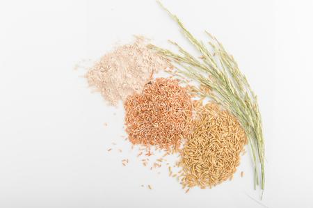 Three variety of rice: wild rice, red rice, and white rice. Shallow DOF