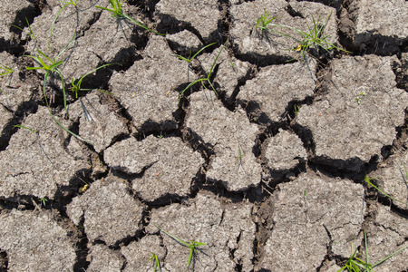 lack: Dry soil with dramatic cracks caused by the lack of water