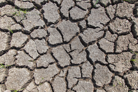 lack water: Dry soil with dramatic cracks caused by the lack of water