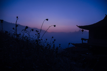 SILHOUETTE OF FLOWER AND CHINESE HOUSE FOR BACKGROUND