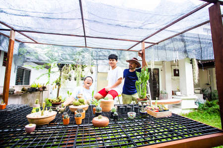 Asian families are happy to grow cactus at home. Zdjęcie Seryjne