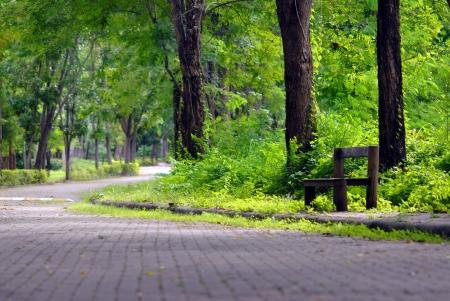 silla de madera: Silla de madera al lado de la carretera