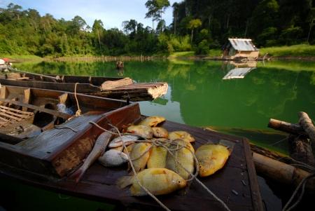 fisheries: Freshwater fisheries   Stock Photo