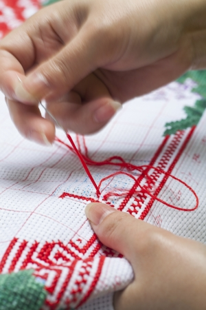 red stitches: Cross-Stitch  Embroidery