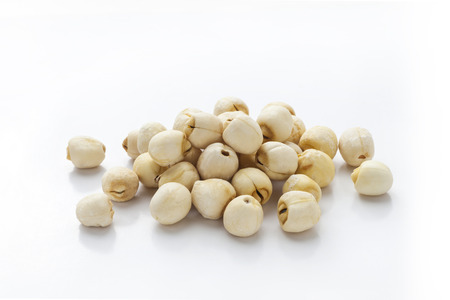 Lotus seeds 스톡 콘텐츠