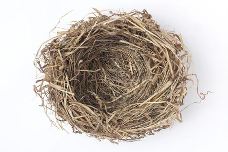 animal shelter: Empty bird nest on white