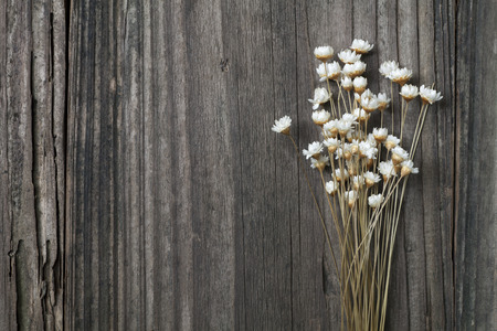 dried flowers: dried wild daisies on an old wooden background