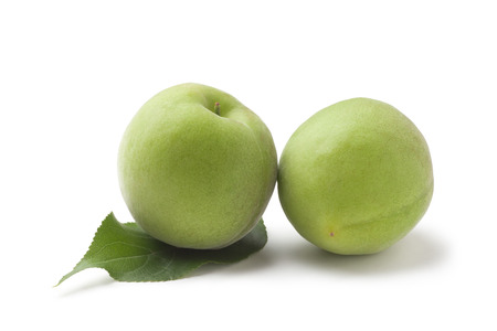 green plum 写真素材