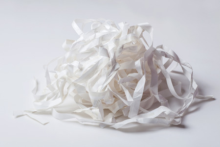 shreds: shredded paper
