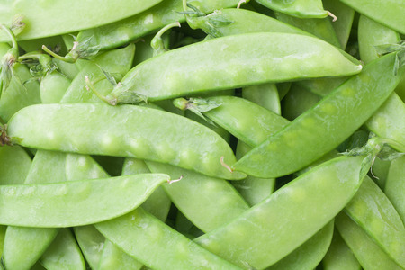 snap: close-up of snow peas