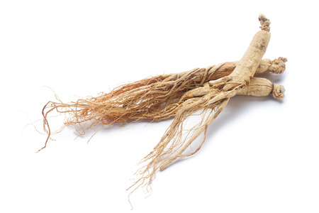 ginseng roots: dry ginseng roots on white background