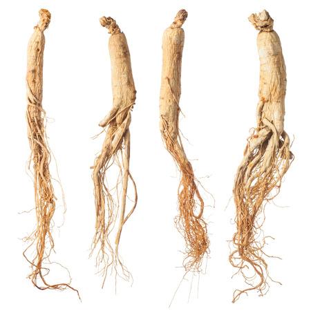 droge ginseng wortels geïsoleerd op wit Stockfoto