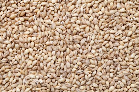 Close-up of peeled barley. Food background.