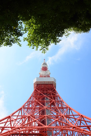 eyed: Tokyo Tower Symetry Worm Eyed View with Green Leaves Editorial