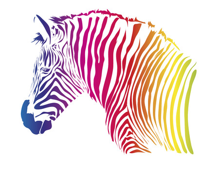 Nice head of zebra isolated on white background Фото со стока