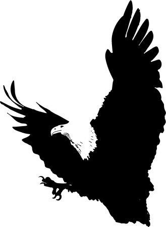 hatched: attacking eagle illustration Stock Photo