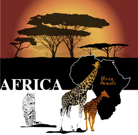 Color africa backgroudn with map, giraffes, leopard and trees, vector illustration Vector