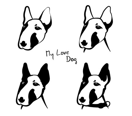 sledge dog: Detail of dogs head drawing, isolated on white, illustration Illustration