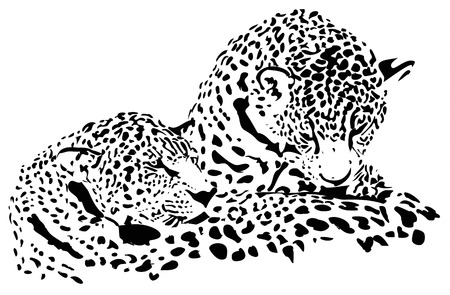 Big cats - Jaguar, cheetah, leopard, vector illustration isolated on white  イラスト・ベクター素材
