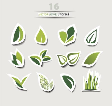 벡터 잎 아이콘은 그림자와 흰색, 컬렉션에 고립 된 집합