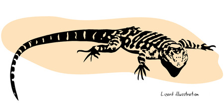 sun illustration: Black lizard lying on the sun, illustration isolated on white background
