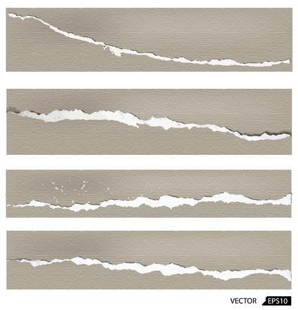 shredded: Collection of torn paper, vector illustration Illustration