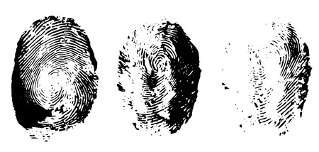 finger print: Three black finger print, illustration isolated on white Illustration