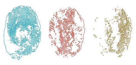 finger prints: Las huellas digitales de colores, ilustraci�n aislados en blanco Vectores