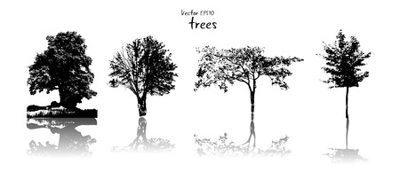 ordinary: Silhouette of ordinary trees, black on white background, vector illustration