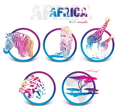 Colorful icon silhuettes, illustration of africa animals isolated on white background