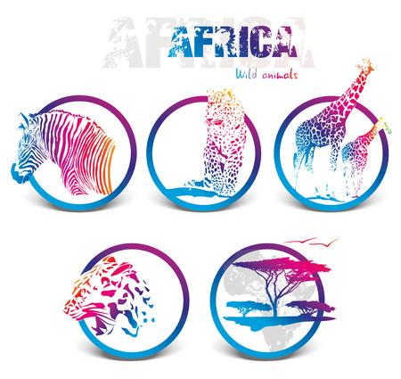 silhuettes icono de colores, la ilustración de los animales de áfrica aislados sobre fondo blanco