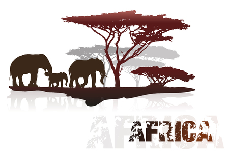 sunset tree: Silhouette of Africa trees and elephants, isolated on white