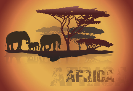 serengeti: Silhouette of Africa trees and elephants, isolated on white