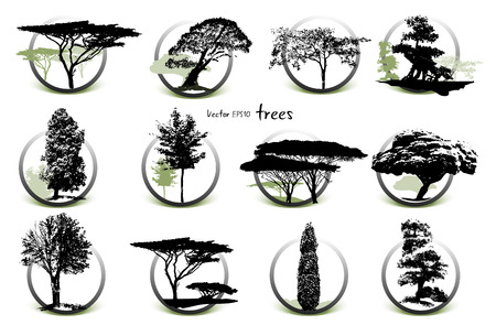 Collection of tree silhouettes, black on white background Ilustração