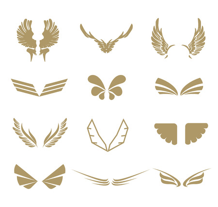 Collection of wings symbol isolated on white