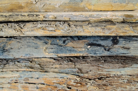 close up of old wood, piling up - background photo