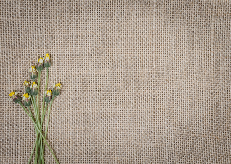 Burlap texture background decorated with little flowers.