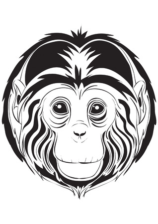 The traced head of the monkey Vector